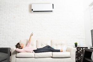 Ductless-Heating-Edmonds-WA
